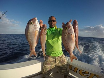 Red Snappers caught by Mike on the Cavalier Cavalier & Blue Marlin Sport Fishing Gran Canaria