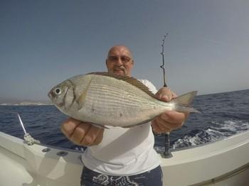 Nice Catch - Hendrik Volkaert from Belgium on the boat Cavalier Cavalier & Blue Marlin Sport Fishing Gran Canaria