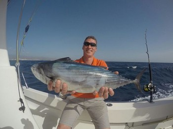 North Atlantic Bonito caught by George from Holland Cavalier & Blue Marlin Sport Fishing Gran Canaria