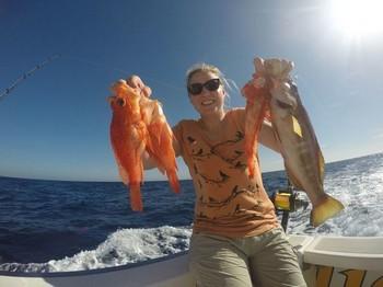 Scorpion fish caught by Katrien Hochemeyer from Germany Cavalier & Blue Marlin Sport Fishing Gran Canaria