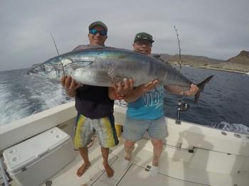 Wahoo,  caught by Peter Heineken from Holland Cavalier & Blue Marlin Sport Fishing Gran Canaria
