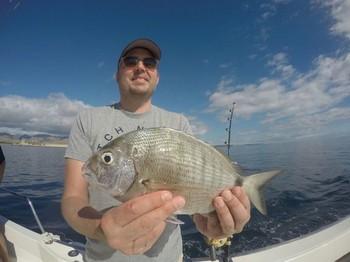 Sea Bream Cavalier & Blue Marlin Sport Fishing Gran Canaria