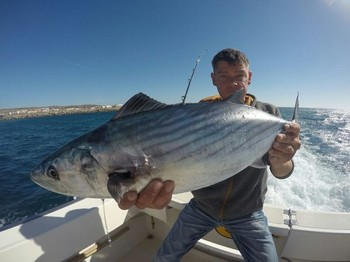 North Atlantic Bonito - Mickey Gratz  from Germany  caught this 27 lbs North Atlantic Bonito Cavalier & Blue Marlin Sport Fishing Gran Canaria