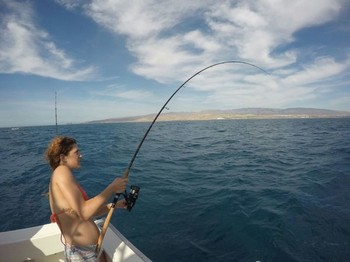 Hooked Up - Alice Bech from Italy hooked up with an Atlantic Bonito Cavalier & Blue Marlin Sport Fishing Gran Canaria
