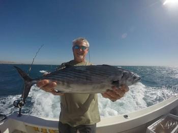 North Atlantic Bonito - Willie Vermeulen from Belgium Cavalier & Blue Marlin Sport Fishing Gran Canaria