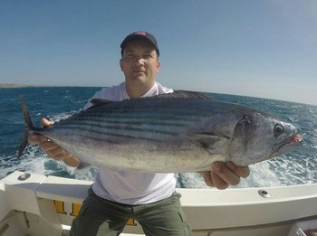 North Atlantic Bonito caught by Michael Rausch from Germany Cavalier & Blue Marlin Sport Fishing Gran Canaria