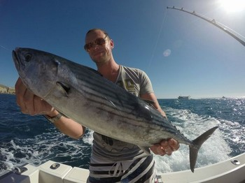 North Atlantic Bonito caught by Juul Geuts from Holland Cavalier & Blue Marlin Sport Fishing Gran Canaria