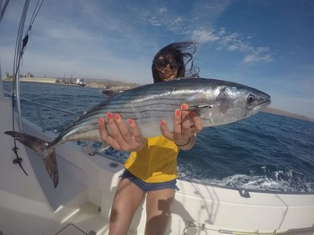 Woooow - Great Fish Cavalier & Blue Marlin Sport Fishing Gran Canaria