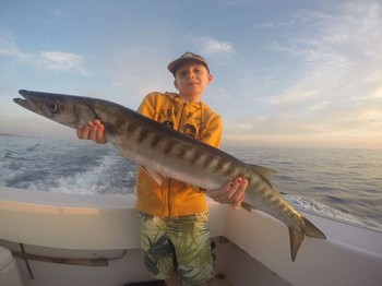 Barracuda - Beautifull Barracuda Cavalier & Blue Marlin Sport Fishing Gran Canaria