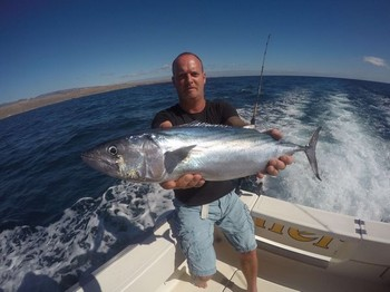 North Atlantic Bonito caught by Gard aasvangen from Norway Cavalier & Blue Marlin Sport Fishing Gran Canaria
