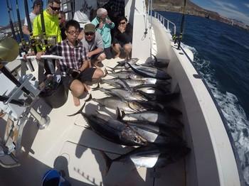 16 Albacores Cavalier & Blue Marlin Sport Fishing Gran Canaria