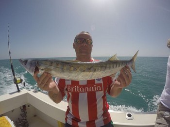 Barracuda - Mark Cairns from the United Kingdom Cavalier & Blue Marlin Sport Fishing Gran Canaria