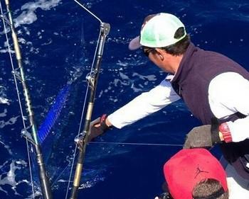 Spearfish Cavalier & Blue Marlin Sport Fishing Gran Canaria