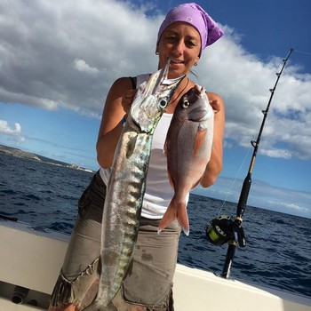 Barracuda caught by Claudia Wüst from Germany Cavalier & Blue Marlin Sport Fishing Gran Canaria