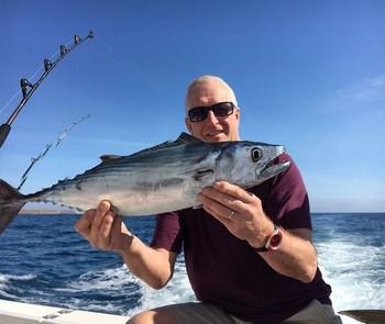 Atlantic Bonito - North Atlantic Bonito caught by Trevor Smith from England Cavalier & Blue Marlin Sport Fishing Gran Canaria