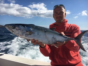 Atlantic Bonito caught by Tomas Dambrauskas from Lituania Cavalier & Blue Marlin Sport Fishing Gran Canaria
