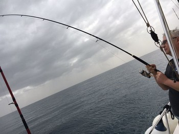 Fish !!!!!!!! Cavalier & Blue Marlin Sport Fishing Gran Canaria