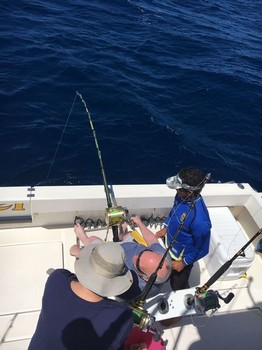 March Photo Archive 2017 Cavalier & Blue Marlin Sport Fishing Gran Canaria
