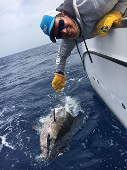 Release Me! Cavalier & Blue Marlin Sport Fishing Gran Canaria