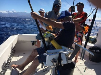 Blue Marlin 330 lbs Cavalier & Blue Marlin Sport Fishing Gran Canaria