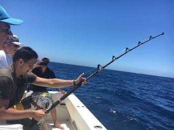 Hooked Up - Gino Nemten from Belgium hooked up Cavalier & Blue Marlin Sport Fishing Gran Canaria