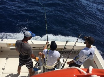 Hooked Up - Guiddon Mathieu hooked up with a 500 lb Blue Marlin Cavalier & Blue Marlin Sport Fishing Gran Canaria