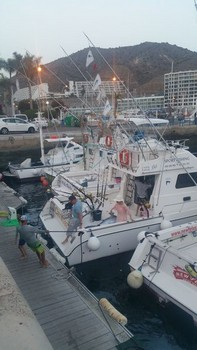Flags in the top - Fiesta de Tuna Cavalier & Blue Marlin Sport Fishing Gran Canaria