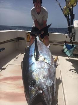 Woooow Cavalier & Blue Marlin Sport Fishing Gran Canaria