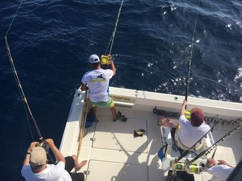 Hook up - A triple hook up Big Eye Tuna Cavalier & Blue Marlin Sport Fishing Gran Canaria