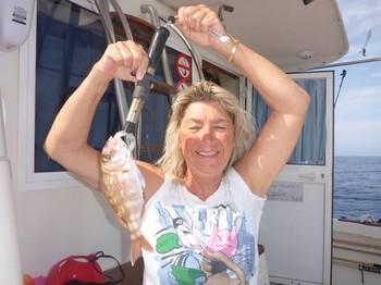 Spanish Seabream Cavalier & Blue Marlin Sport Fishing Gran Canaria