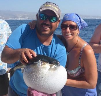 Puffer fish Cavalier & Blue Marlin Sport Fishing Gran Canaria