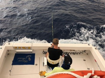 The Winner Cavalier & Blue Marlin Sport Fishing Gran Canaria