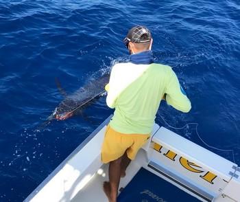 Good job Cavalier & Blue Marlin Sport Fishing Gran Canaria