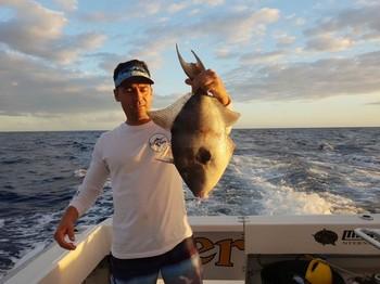 Pez gatillo Pesca Deportiva Cavalier & Blue Marlin Gran Canaria