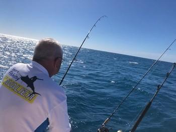 Klaassie Cavalier & Blue Marlin Sport Fishing Gran Canaria