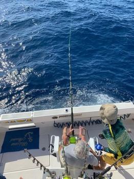 September Photo Archive 2019 Cavalier & Blue Marlin Sport Fishing Gran Canaria