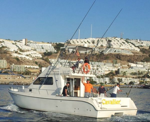 Lock down 26/4 Cavalier & Blue Marlin Sport Fishing Gran Canaria