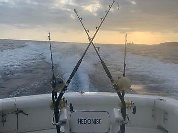 2 Big Eye Tuna Cavalier & Blue Marlin Sport Fishing Gran Canaria