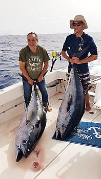 Cavalier caught 3 Big Eye Tuna Cavalier & Blue Marlin Sport Fishing Gran Canaria