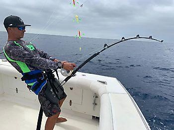2 Blue Marlin and many Tuna Cavalier & Blue Marlin Sport Fishing Gran Canaria