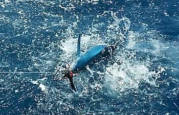 Quiet Cavalier & Blue Marlin Sport Fishing Gran Canaria