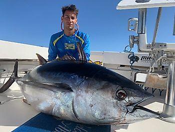 250llb Bigeye Tuna Cavalier & Blue Marlin Sport Fishing Gran Canaria