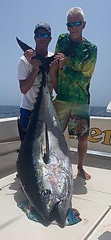Another large Bigeye Tuna! Cavalier & Blue Marlin Sport Fishing Gran Canaria