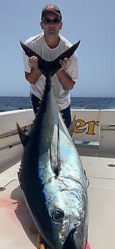 100 kg Grootoog Tonijn voor Michael Rausch Cavalier & Blue Marlin Sport Fishing Gran Canaria