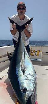 https://www.bluemarlin3.com/nl/grootoog-tonijn Cavalier & Blue Marlin Sport Fishing Gran Canaria