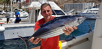 https://www.bluemarlin3.com/nl/skipjack-tonijn Cavalier & Blue Marlin Sport Fishing Gran Canaria