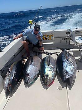 4 Atún Ojo Grande Pesca Deportiva Cavalier & Blue Marlin Gran Canaria