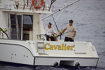https://www.bluemarlin3.com/nl/cavalier Cavalier & Blue Marlin Sport Fishing Gran Canaria