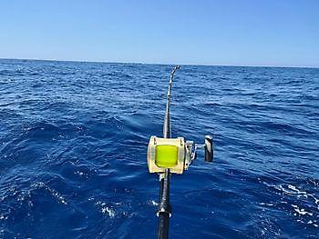 Very quiet Cavalier & Blue Marlin Sport Fishing Gran Canaria