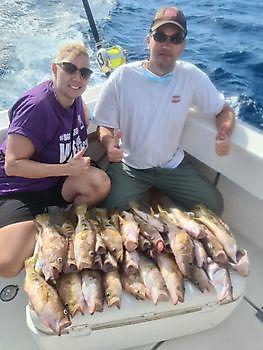 https://www.bluemarlin3.com/nl/schriftbaars Cavalier & Blue Marlin Sport Fishing Gran Canaria